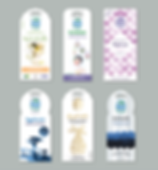 EarthKiss_concepts_lineup-01.png