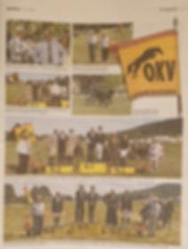 Pferdewoche Seite 3.jpg