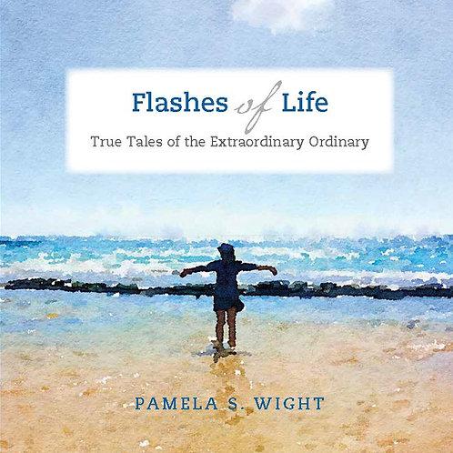 Flashes of Life.epub