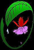 Logo Fuchsia Delhommeau.png