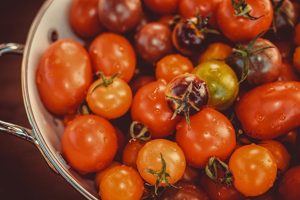 tomatoes-3702962_1280.jpg