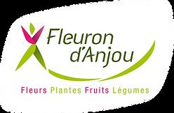 Logo Fleuron d'Anjou 96 dpi RVB.png