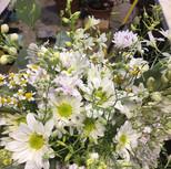seasonal flowers in white