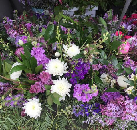 flowers in purples