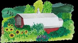 barn illustration for website.png