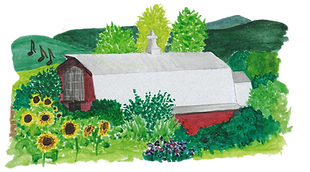 barn illustration for website.png
