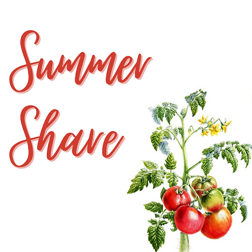 Summer Share - Small