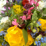 early season flowers