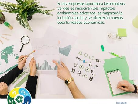 situación del empleo verde en paraguay