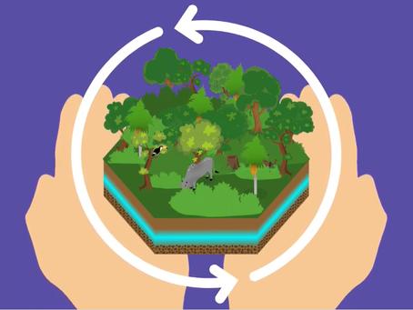 servicios ambientales de los pastizales naturales