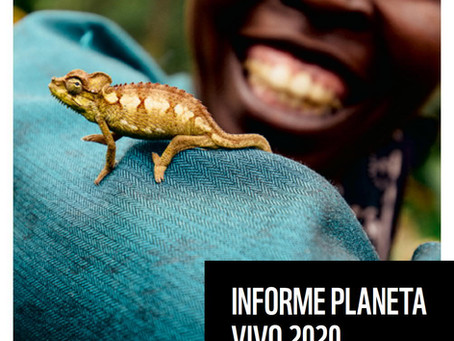 informe planeta vivo 2020