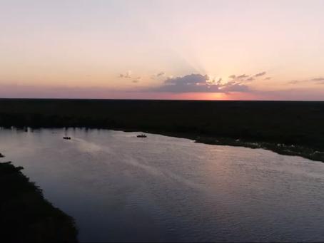 pantanal, agua y vida