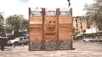WWF Pabellón