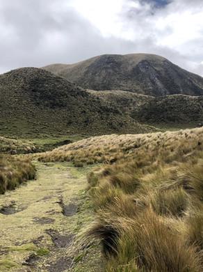 La Condición Local: Los Andes– un paraíso poco apreciado