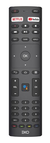 K42FSG - 5 - Remote.jpg