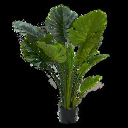 Plantas y Árboles