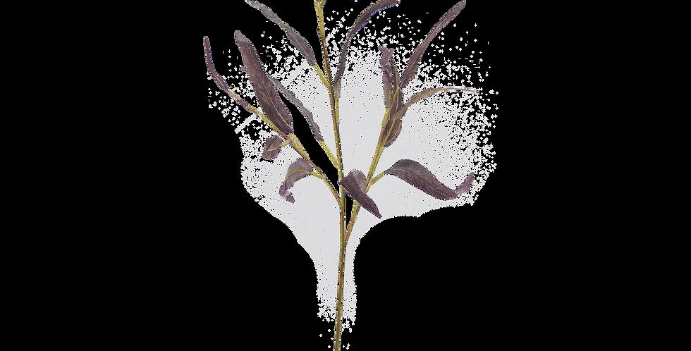 Vara de Ecualipto Natural Touch 60cm color vino