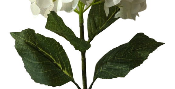 Hortensia Natural Touch 60cm