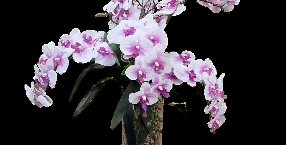 Orquídeas en cristal.