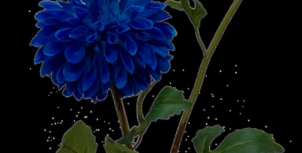Dahlia Lipoma 50cm