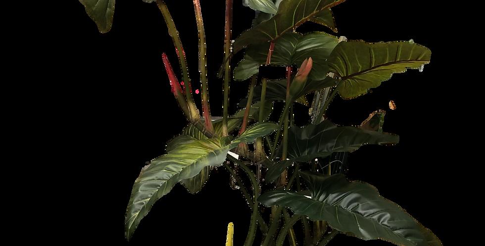 Planta Hoja Elegante 155cm de alto