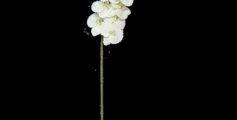 Orquídea Natural Touch de 11 flores 60cm