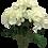 Thumbnail: Hortensia en ramo Natural Touch 60cm, 5 flores
