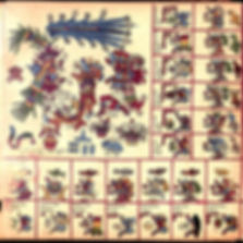 Borbonicus_09.jpg