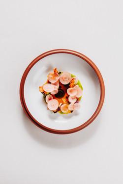carrot & sea buckthorn - 2019