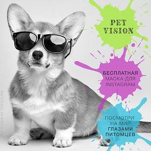 Pet Vision Как тебя видит твой питомец