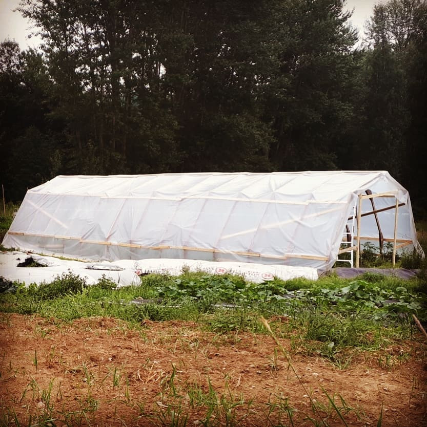 Happy Hills Farm greenhouse