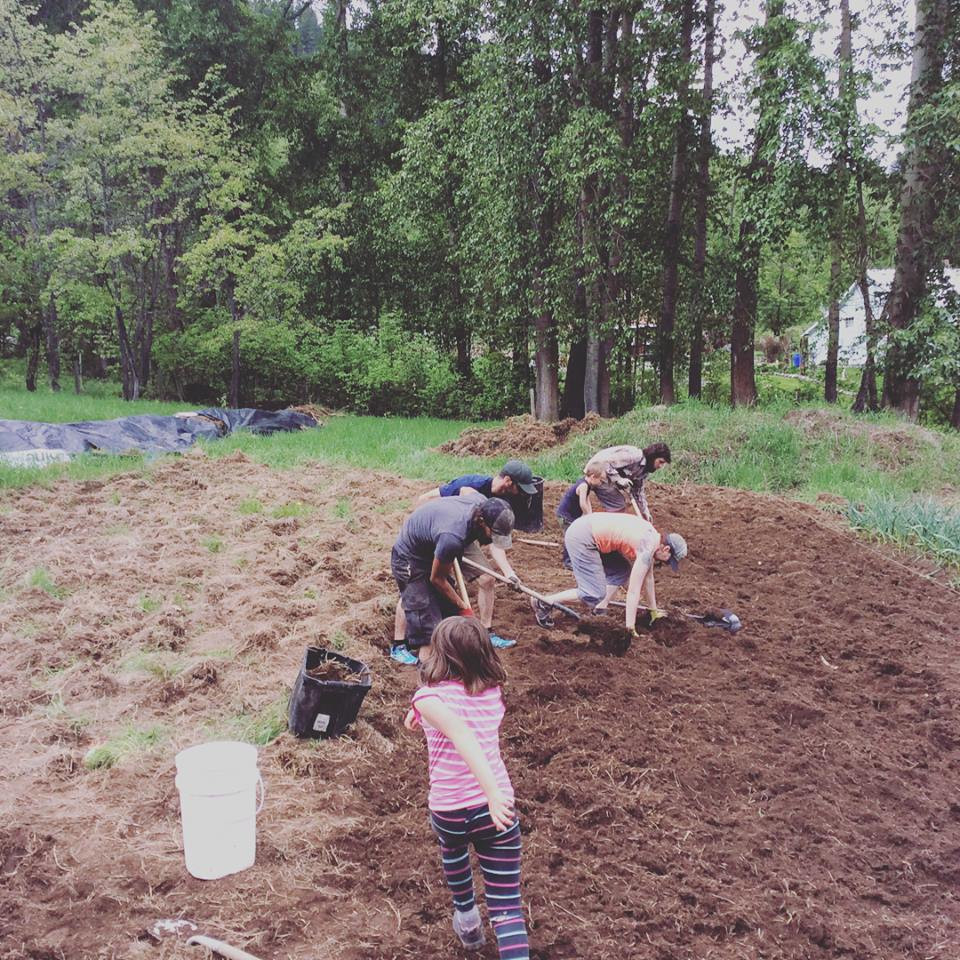 Happy Hills Farm building blocks with volunteers