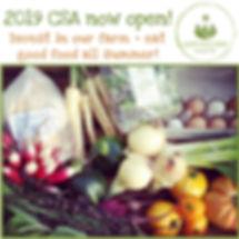 2019 CSA open IG.jpg