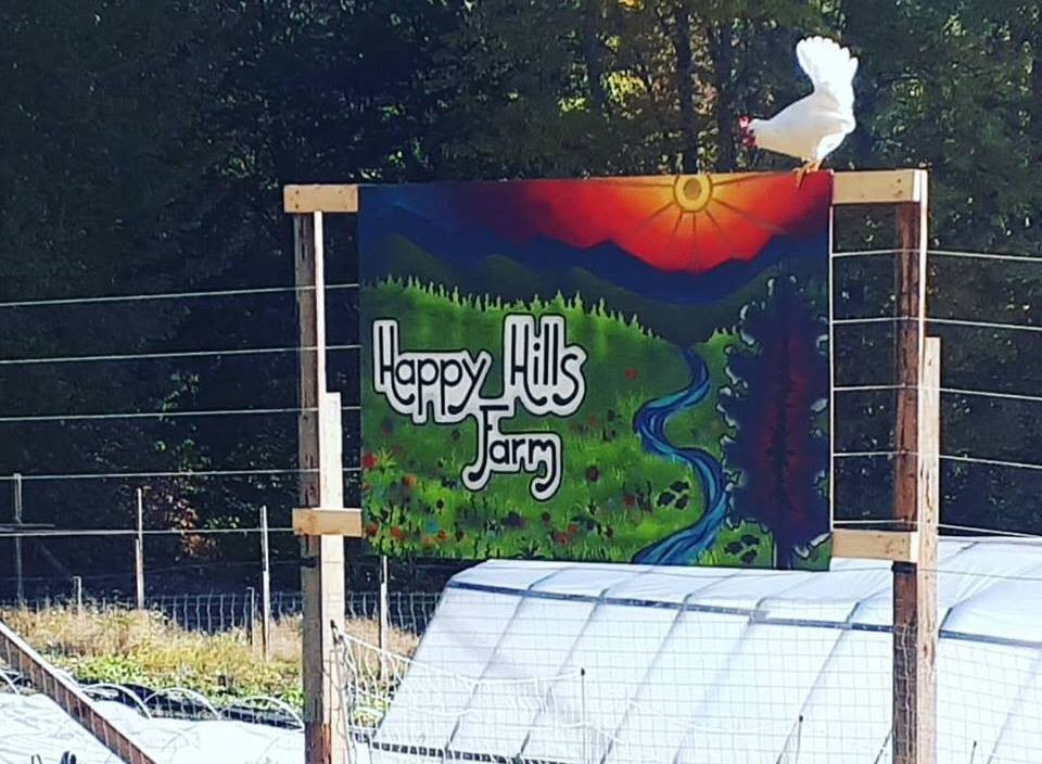 Happy Hills Farm chickens
