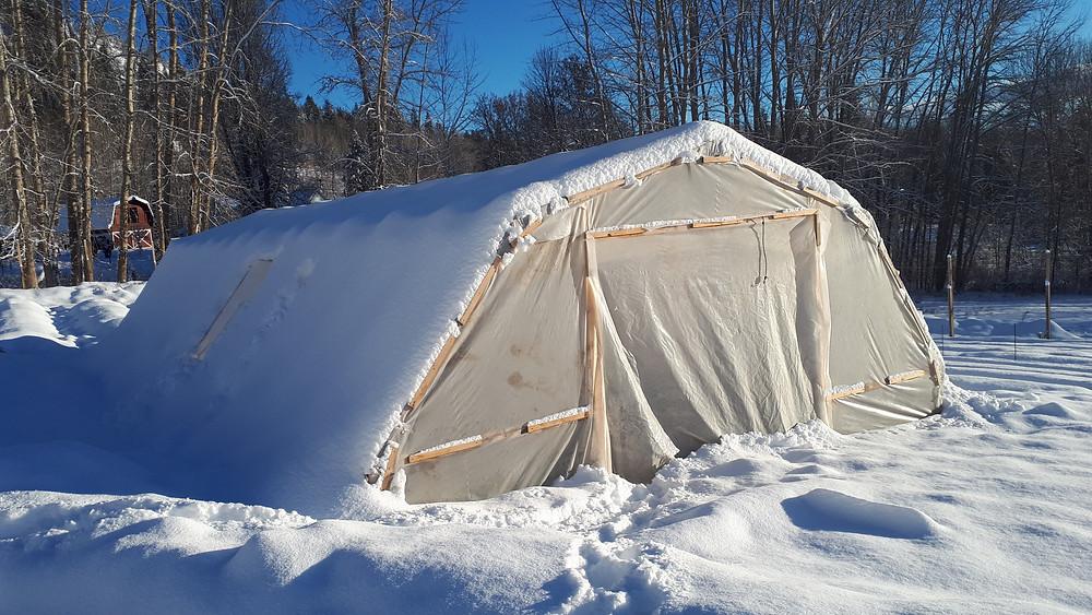 Happy Hills Farm winter greenhouse