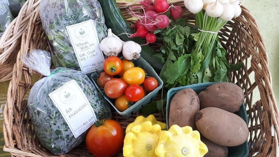 basket of food.jpg