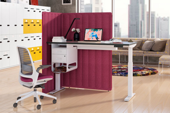 Migration single desk.JPG