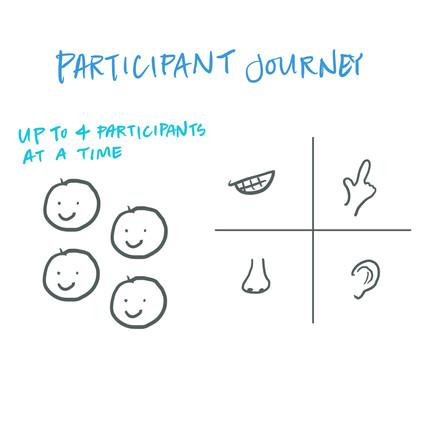 Participant Journey