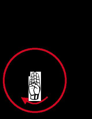 Sign B - Flip Hand