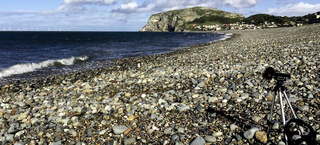 Seashore and Waves Recording