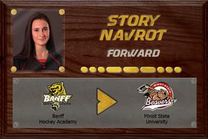 Story Navrot