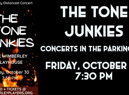 The Tone Junkies - Outdoor Concerts