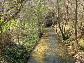 Redacción de proyecto de Senda Fluvial del Río Nora