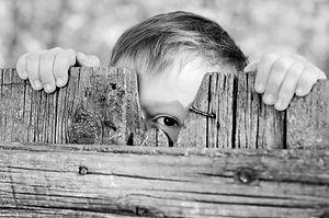 Kid fence.jpg
