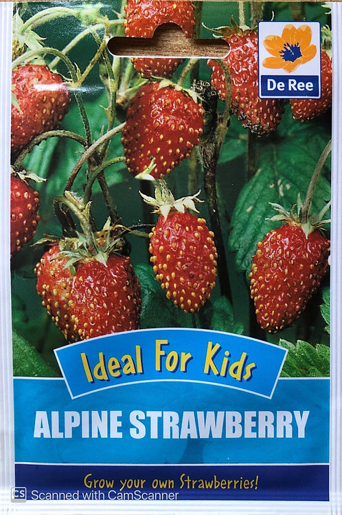 Alpine Strawberry (De Ree Seeds)