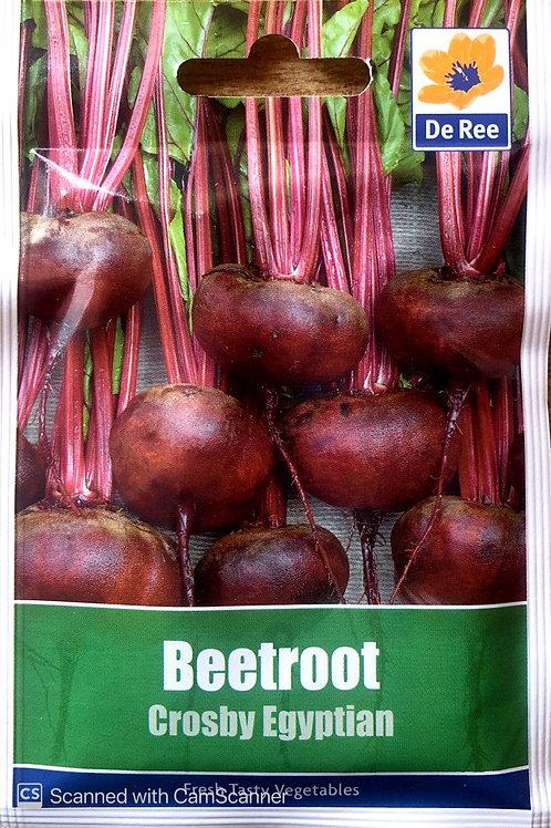 Beetroot Crosby Egyptian (De Ree Seeds)