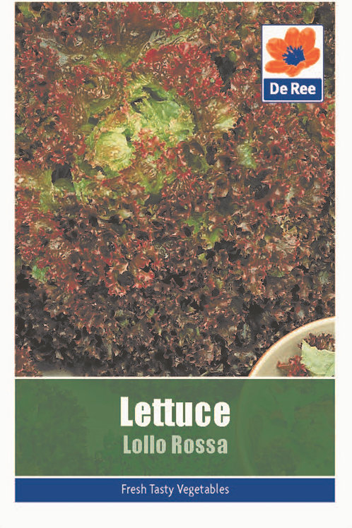 Lettuce Lollo Rossa (De Ree Seeds)