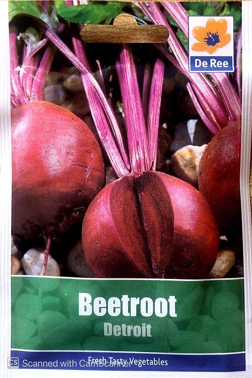 Beetroot Detroit (De Ree Seeds)