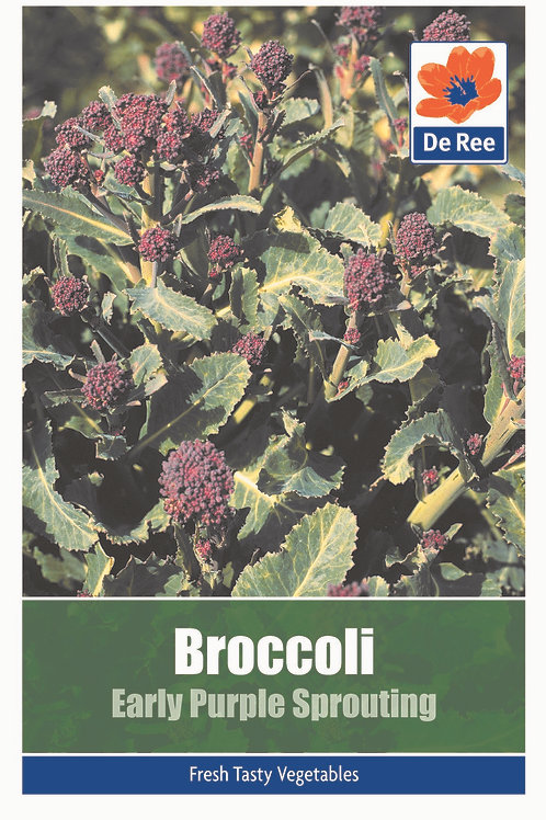 Broccoli Early Purple Sprouting (De Ree Seeds)