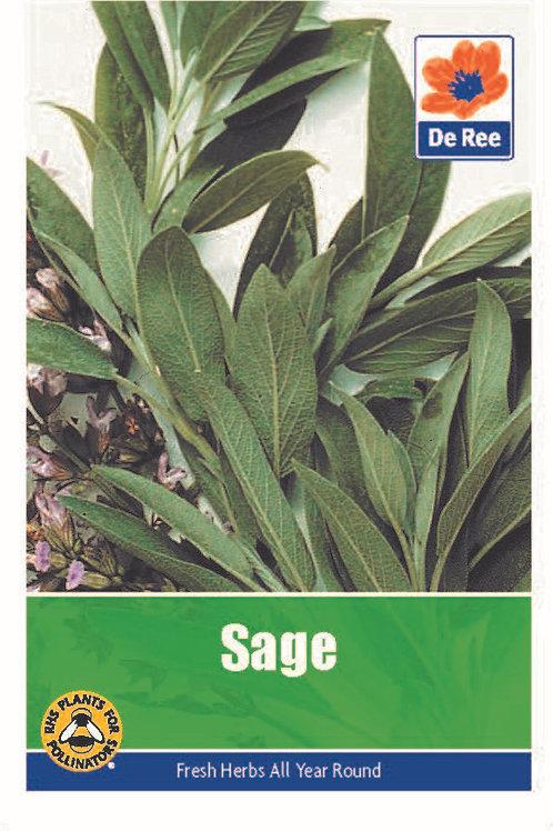 De Ree Sage Seeds